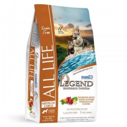 Forza10 LEGEND ALL LIFE MEDIUM/LARGE