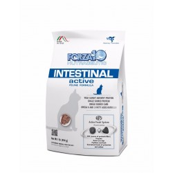 Forza10 INTESTINAL Active Cat
